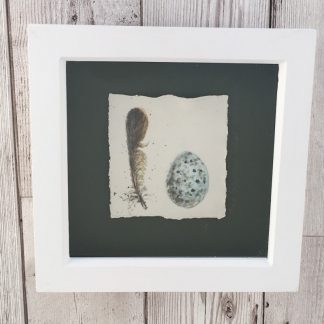 Tree Sparrow egg & feather porcelain box frame