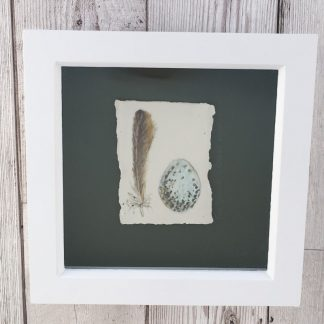 Tree Sparrow feather & egg on porcelain, wooden box frame