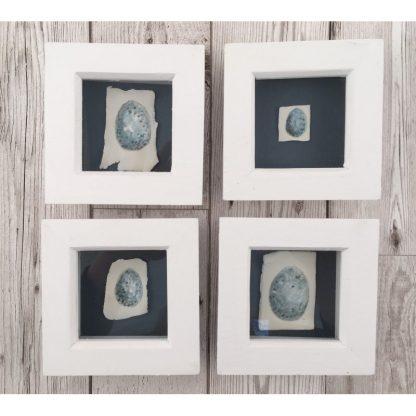 Blackbird egg on porcelain, Wooden box frame
