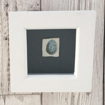 Blackbird egg on porcelain, Wooden box frame