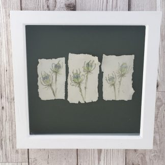 Wildflower studies on porcelain, wooden box frame