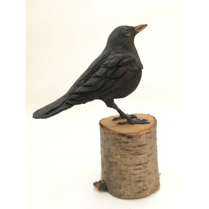 Briar the Blackbird