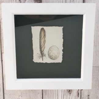 Robin egg & feather porcelain box frame